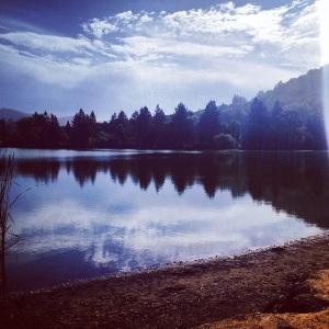 Beautiful run around the lake