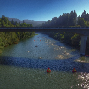 Swim in the Russian River