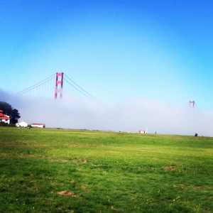 Blanket of fog. As seen on my run.